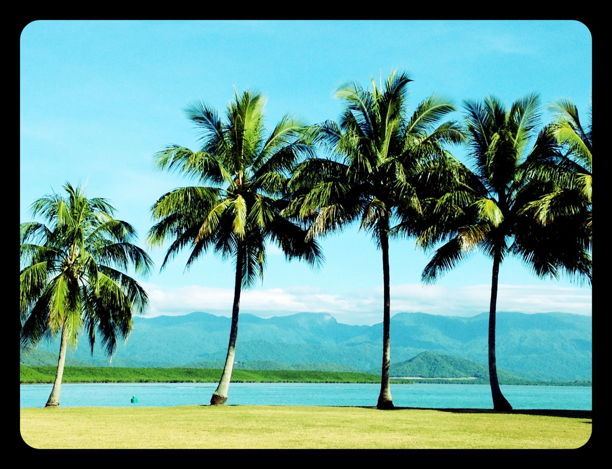 Outside it's the beauty of Port Douglas