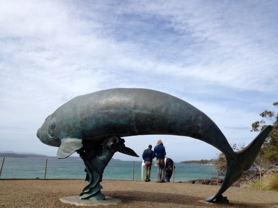 three month old southern right whale lifesize sculpture!